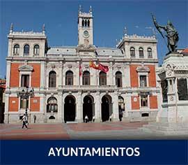 Sector Ayuntamientos